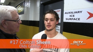 octv-grizzlys-sheen02