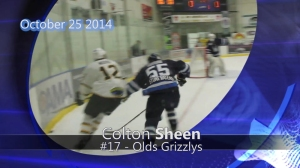 octv-grizzlys-sheen04